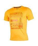 koszulka do biegania męska REEBOK ONE SERIES SHORT SLEEVE TEE / BK7320